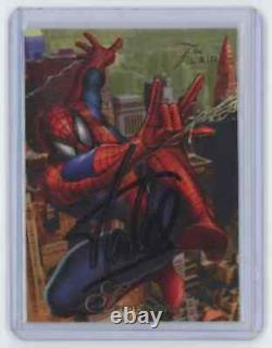 Marvel Cards Spider Man Signed By Stan Lee