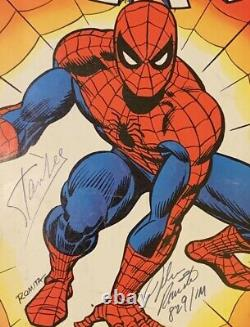 Signed STAN LEE & JOHN ROMITA Treasury Edition 1 Spectacular SPIDER-MAN 829/1M